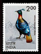 monal stamp