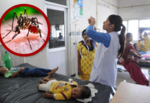 dengue ward doon hospital