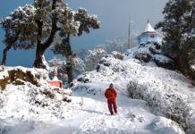 New Year Snowfall
